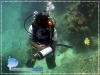 Underwater Lenght Estimation