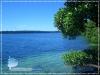 The Jellyfish Lake