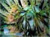 Discotreama crinophila