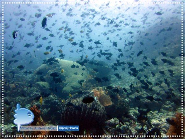 Ikan berkelompok di bawah laut