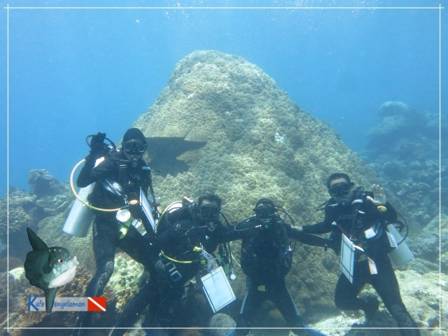 Divers take safety stop