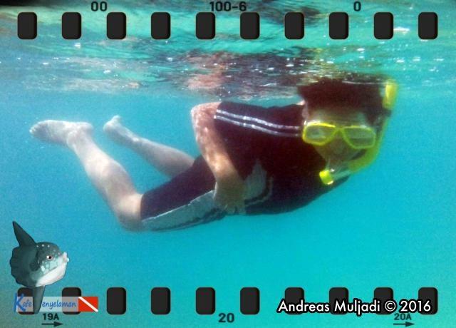 Snorkeling at Sepa