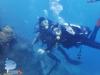 Enjoy Underwater World