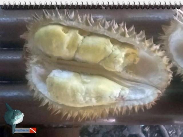 Durian Ambon