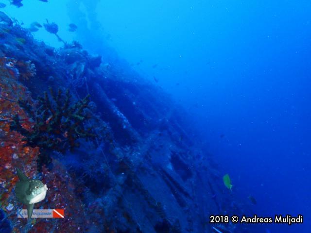 Underwater Heritage