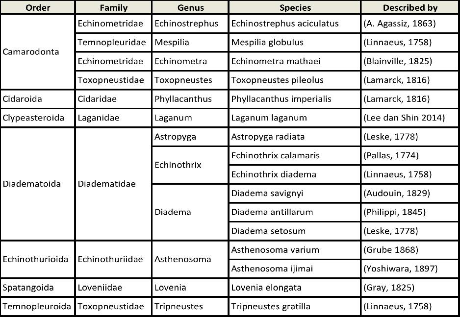 Tabel Klasifikasi Bulu Babi