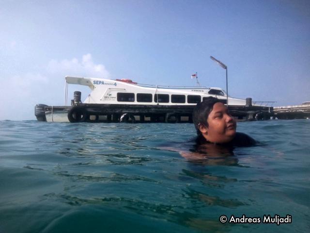 Swim at Sepa Jetty