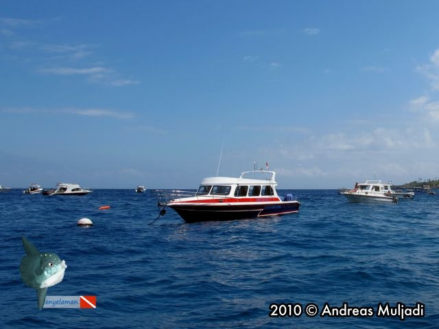 Diving Boat Gathering at Nusa Penida
