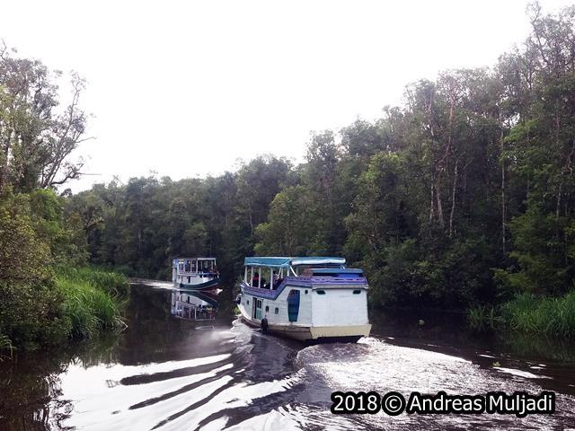 lalu lintas air sungai Sekonyer