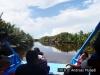 Menjelajah Sungai Sekonyer