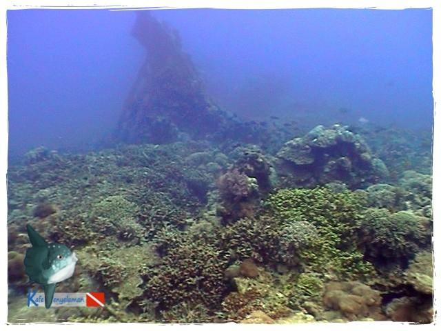 Karimunjawa Ship Wreck