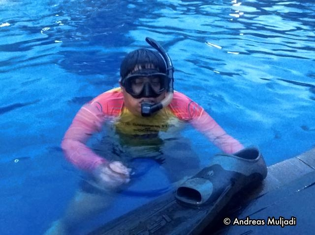 The First Day using Mask and Snorkel