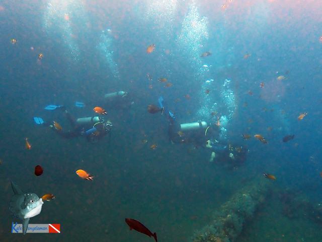 Para penyelam lain