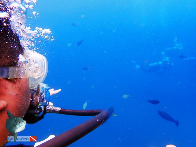 Gladden masuk dunia bawah laut