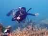 LPT : Reef Watching