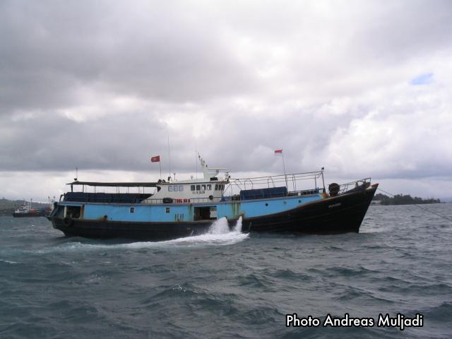 Kapal Penampung Mengumpulkan  Ikan Hidup dari Pulau-Pulau di Indonesia