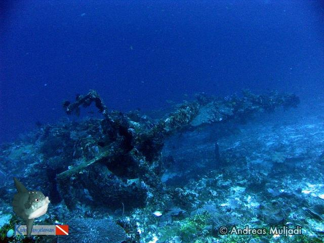 P47 Thuderbolt Wreck